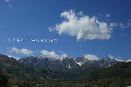 冠雪の山p.jpg