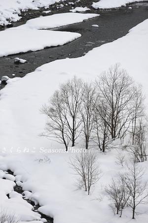雪景色2014平岩1p.jpg